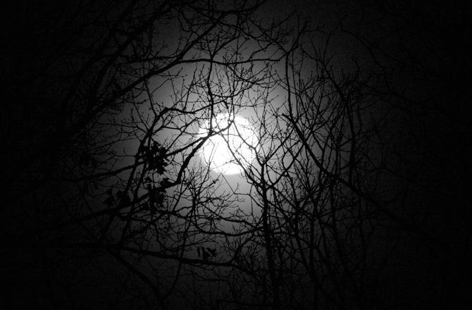 free moon spell